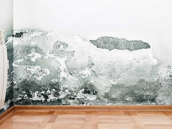 Umidit di risalita soluzioni definitive deumidificazione muraria ambientale umidit di risalita - Umidita in casa soluzioni ...